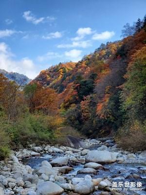 【秋·唐家河国家自然保护区】三星Note10+直出