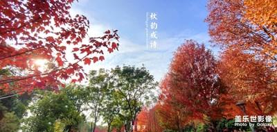 大十眼下的秋天--秋韵成诗