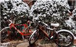 【色彩】白色的雪