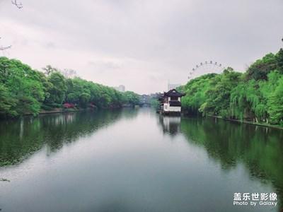 【2019最美瞬间】游·园景,风光无限美