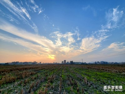岭南冬季的夕阳余晖