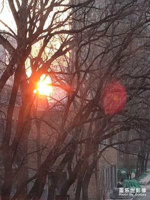 【缤纷世界】朝阳