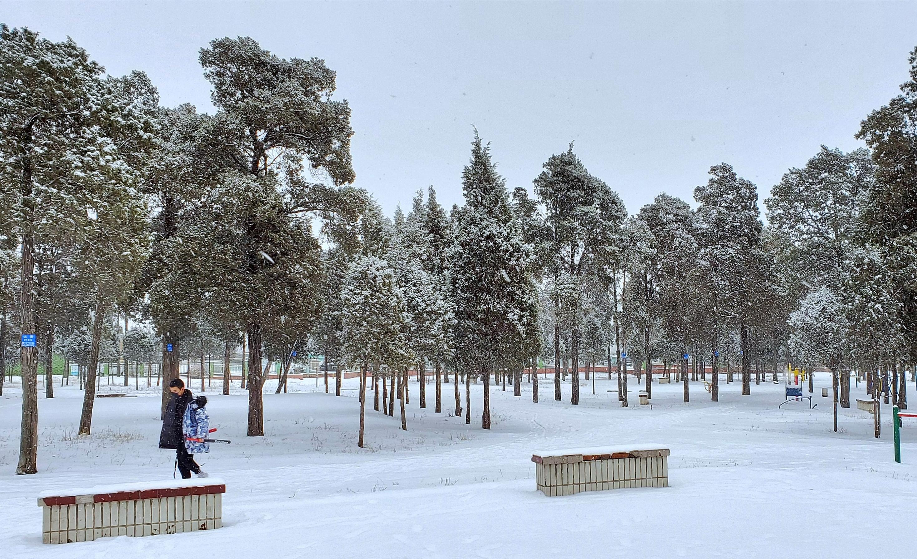 GalaxyS10+ 春雪(一)