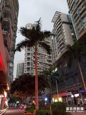 深圳现在的早上10点钟