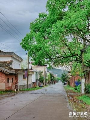 【最美瞬间】细雨蒙蒙中的赣西乡村