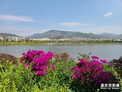 【春日丽影】+武定湿地公园