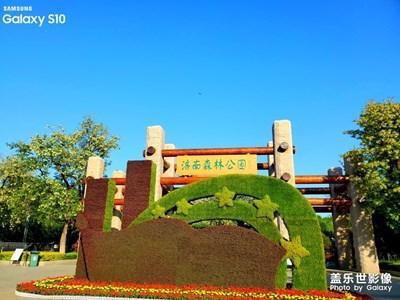 【春日丽影】+济南森林公园