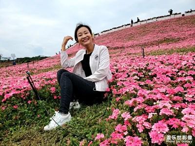【春日丽影】+迷易风