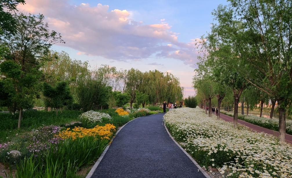 周末北京郊野公园随手拍