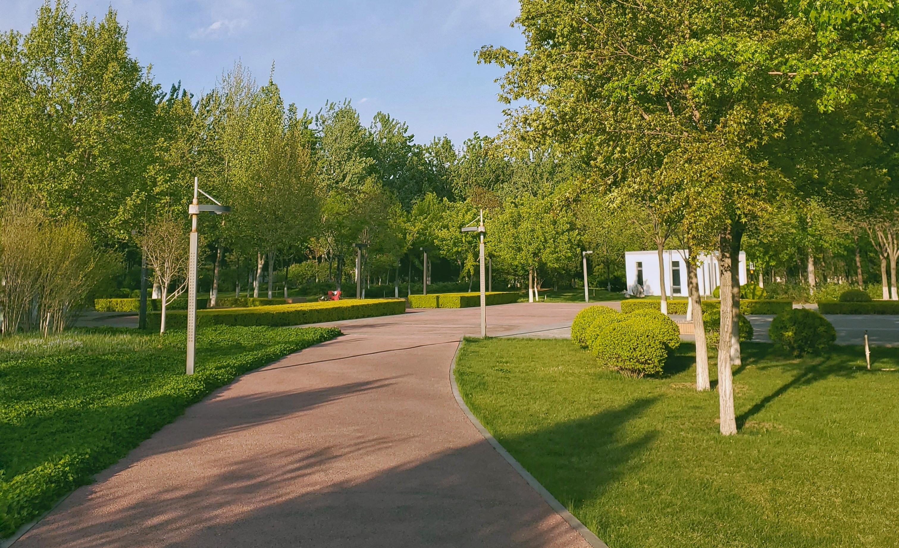 GalaxyS10+ 公园小景