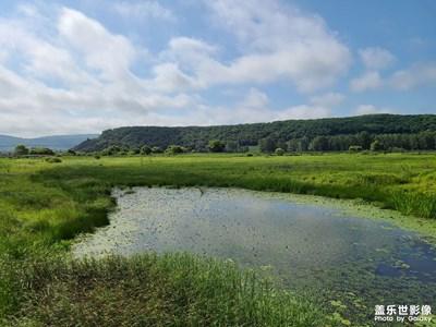 雁鸣湖湿地