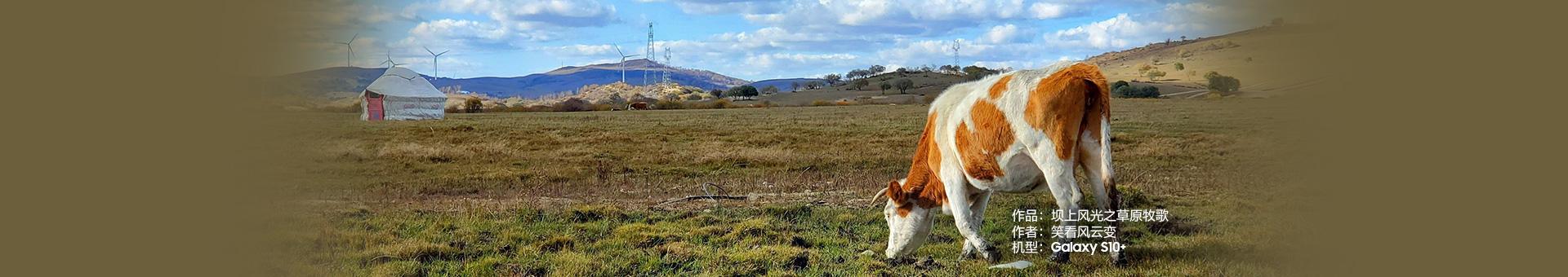 Galaxy S10+ 坝上风光之草原牧歌