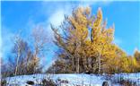 【多彩深秋】秋与冬的相逢