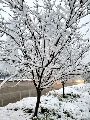 【花花世界】+冰雪世界