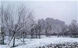 【心动的瞬间】雪后古城西安