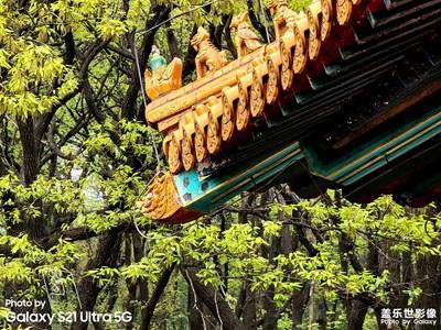 南京·明孝陵
