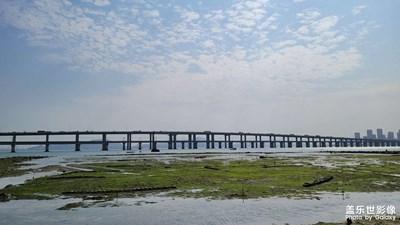 厦门大桥(集美学村)下的海边风景