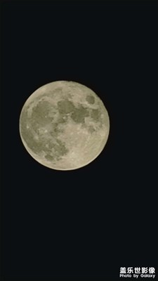 月是故乡圆