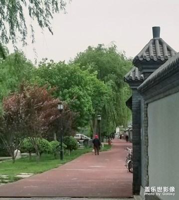 【在夏日】北京的胡同