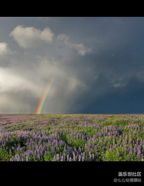 接近大自然风景迷人 - 盖乐世社区 - 三星手机官方