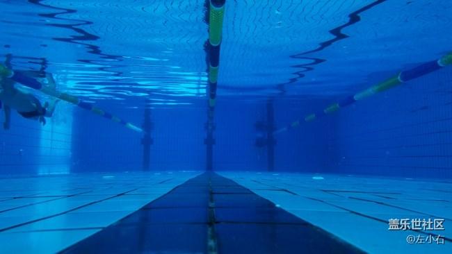 壁纸 海底 海底世界 海洋馆 水族馆 桌面 650_366